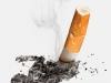 tabaco11